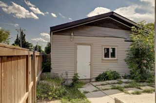Photo 20: 39 TEMPLETON Bay NE in Calgary: Temple Detached for sale : MLS®# C4261521