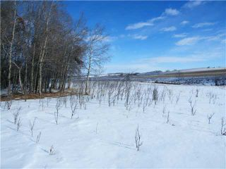 Photo 4: : Rural Mountain View County Rural Land for sale : MLS®# C3653320