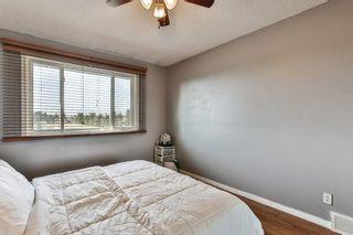 Photo 13: 2824 66 Street NE in Calgary: Pineridge Detached for sale : MLS®# C4274785