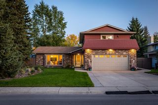Photo 40: 10708 WILLOWFERN Drive SE in Calgary: Willow Park Detached for sale : MLS®# A1016709
