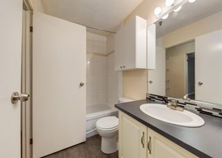Photo 20: 110 727 56 Avenue SW in Calgary: Windsor Park Apartment for sale : MLS®# A1133912