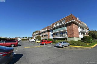 Photo 29: 208 1680 Poplar Ave in VICTORIA: SE Mt Tolmie Condo for sale (Saanich East)  : MLS®# 841299