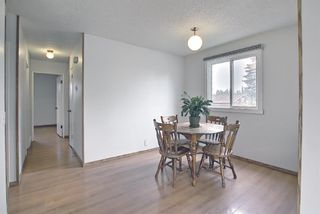 Photo 7: 4259 49 Street NE in Calgary: Whitehorn Detached for sale : MLS®# A1131311
