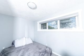 Photo 26: 280 Rundlefield Road NE in Calgary: Rundle Detached for sale : MLS®# A1142021