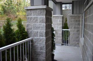 """Photo 14: 101 13277 108 Avenue in Surrey: Whalley Condo for sale in """"PACIFICA"""" (North Surrey)  : MLS®# R2154859"""
