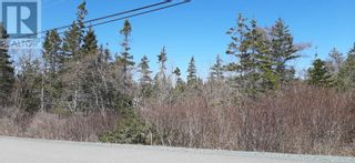 Photo 2: Lot Eastern Shore Road in Eagle Head: Vacant Land for sale : MLS®# 202109030