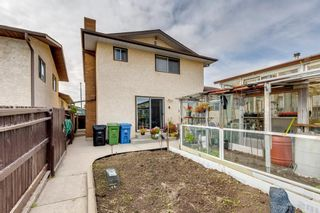 Photo 35: 147 Templevale Place NE in Calgary: Temple Detached for sale : MLS®# A1144568