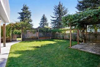 Photo 25: 34930 MT BLANCHARD Drive in Abbotsford: Abbotsford East House for sale : MLS®# R2110634