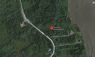 Photo 3: 359 Owl Drive in East Petpeswick: 35-Halifax County East Vacant Land for sale (Halifax-Dartmouth)  : MLS®# 202102137