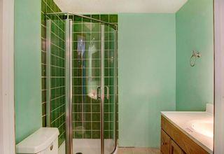 Photo 23: 254 SARATOGA Close NE in Calgary: Monterey Park House for sale : MLS®# C4165371