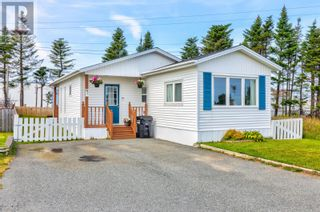 Photo 1: 48 Hussey Drive in St. John's: House for sale : MLS®# 1235960