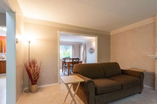 Photo 9: 151 Seaview St in : NI Kelsey Bay/Sayward House for sale (North Island)  : MLS®# 859937