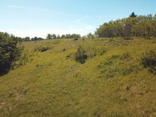 Photo 13: 31127 Township Road  262 Road in Rural Rocky View County: Rural Rocky View MD Detached for sale : MLS®# A1042056