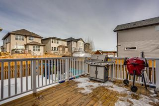 Photo 26: 114 CHAPARRAL VALLEY Square SE in Calgary: Chaparral Detached for sale : MLS®# A1074852