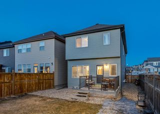 Photo 18: 269 Auburn Meadows Boulevard SE in Calgary: Auburn Bay Detached for sale : MLS®# A1082389