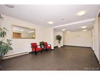 Photo 14: 205 3255 Glasgow Ave in VICTORIA: SE Quadra Condo for sale (Saanich East)  : MLS®# 672961