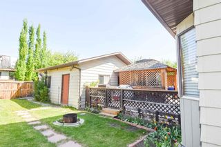 Photo 34: 1244 Berkley Drive NW in Calgary: Beddington Heights Detached for sale : MLS®# A1118414
