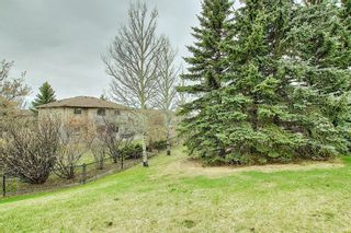 Photo 19: 212 Edgebrook Court NW in Calgary: Edgemont Detached for sale : MLS®# A1105175