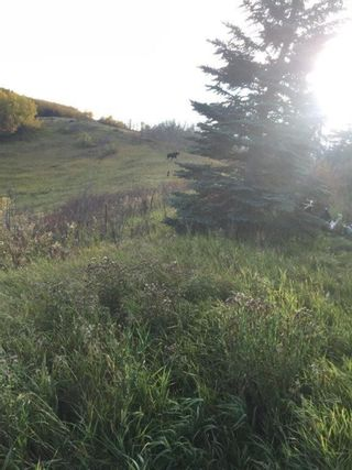 Photo 6: 31127 Township Road  262 Road in Rural Rocky View County: Rural Rocky View MD Detached for sale : MLS®# A1042056
