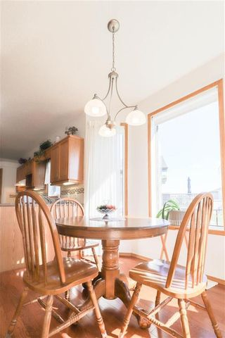 Photo 14: 102 Rutledge Crescent in Winnipeg: Harbour View South Residential for sale (3J)  : MLS®# 202122653