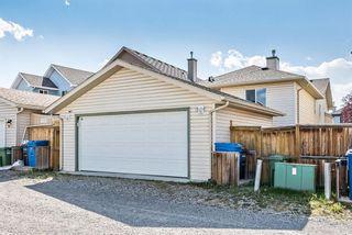 Photo 34: 66 Cimarron Grove Close: Okotoks Detached for sale : MLS®# A1146158