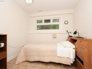 Photo 16: 4381 Shelbourne St in VICTORIA: SE Mt Doug House for sale (Saanich East)  : MLS®# 822185