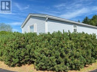 Photo 8: 302 Route 735 in Mayfield: House for sale : MLS®# NB060482
