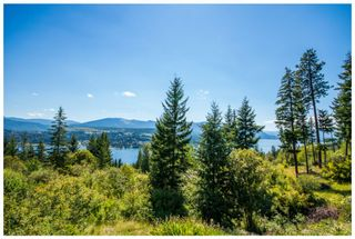 Photo 71: 3630 McBride Road in Blind Bay: McArthur Heights House for sale (Shuswap Lake)  : MLS®# 10204778