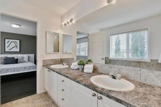 Photo 32: 18 Copperfield Crescent SE in Calgary: Copperfield Detached for sale : MLS®# A1141643