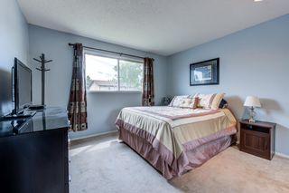 Photo 19: 3613 44 Avenue in Edmonton: Zone 29 House for sale : MLS®# E4246393