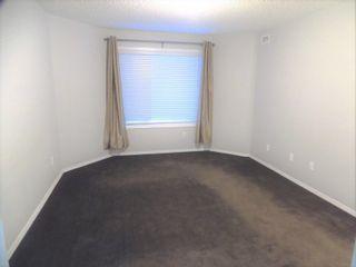 Photo 18: 104 8909 100 Street in Edmonton: Zone 15 Condo for sale : MLS®# E4246923