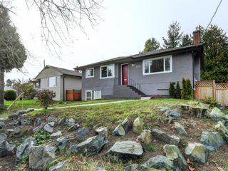 Photo 19: 3590 Shelbourne St in VICTORIA: SE Cedar Hill House for sale (Saanich East)  : MLS®# 805260