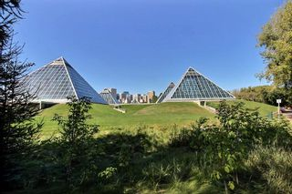 Photo 25:  in Edmonton: Zone 18 Condo for sale : MLS®# E4235388