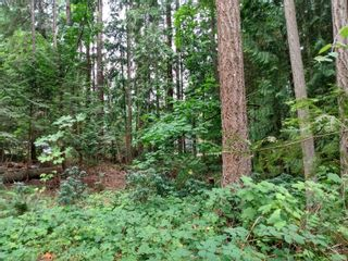 Photo 10: 99 Pirates Lane in : Isl Protection Island Land for sale (Islands)  : MLS®# 882311