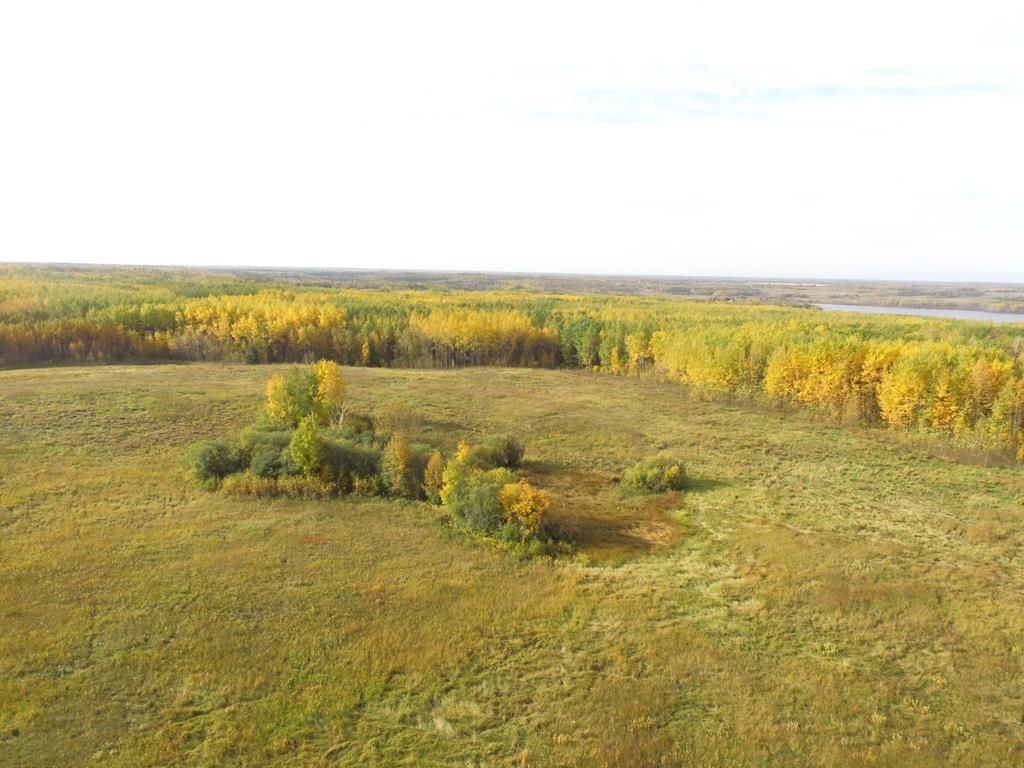Photo 2: Photos: N1/2 SE19-57-1-W5: Rural Barrhead County Rural Land/Vacant Lot for sale : MLS®# E4217154