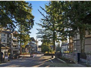 """Photo 3: 503 33318 E BOURQUIN Crescent in Abbotsford: Central Abbotsford Condo for sale in """"Nature's Gate"""" : MLS®# R2430047"""