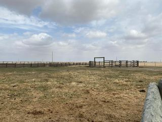 Photo 46: 578010 168 Street: Rural Foothills County Detached for sale : MLS®# A1099226