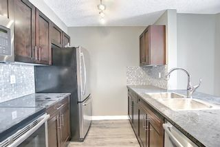 Photo 4: 4305 1317 27 Street SE in Calgary: Albert Park/Radisson Heights Apartment for sale : MLS®# A1107979