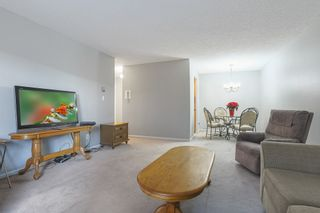 """Photo 6: 103 12096 222 Street in Maple Ridge: West Central Condo for sale in """"Canuck Plaza"""" : MLS®# R2521052"""