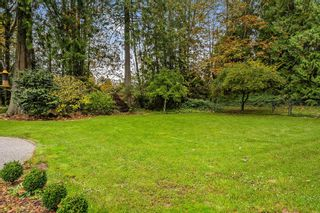"Photo 32: 24271 124 Avenue in Maple Ridge: Websters Corners House for sale in ""ACADEMY PARK"" : MLS®# R2544542"
