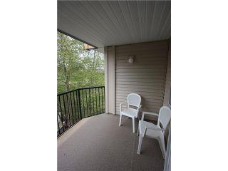 Photo 9: # 409 11595 FRASER ST in Maple Ridge: East Central Condo for sale : MLS®# V945574