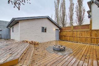 Photo 42: 312 Mt Aberdeen Close SE in Calgary: McKenzie Lake Detached for sale : MLS®# A1046407
