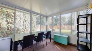 Photo 41: 144 QUESNELL Crescent in Edmonton: Zone 22 House for sale : MLS®# E4265039