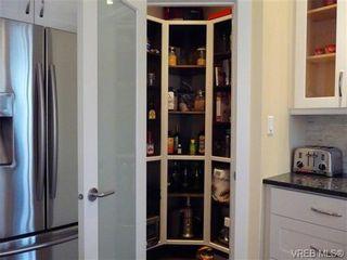 Photo 8: 617 Simcoe St in VICTORIA: Vi James Bay Half Duplex for sale (Victoria)  : MLS®# 663410