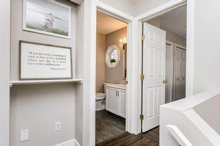 Photo 22: 4259 23St in Edmonton: Larkspur House for sale : MLS®# E4203591