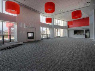 Photo 14: Ambleside in : Zone 56 Condo for sale (Edmonton)  : MLS®# E3424555