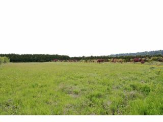 """Photo 15: 7200 216TH Street in Langley: Willoughby Heights Land for sale in """"Milner"""" : MLS®# F1411651"""