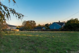 Photo 5: 3281 Cedar Hill Rd in VICTORIA: SE Cedar Hill Land for sale (Saanich East)  : MLS®# 773555