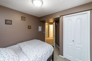 Photo 33: 5 Nash Close: St. Albert House for sale : MLS®# E4266287