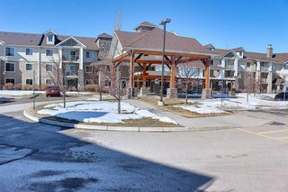 Photo 46: 326 428 Chaparral Ravine View SE in Calgary: Chaparral Apartment for sale : MLS®# A1078916